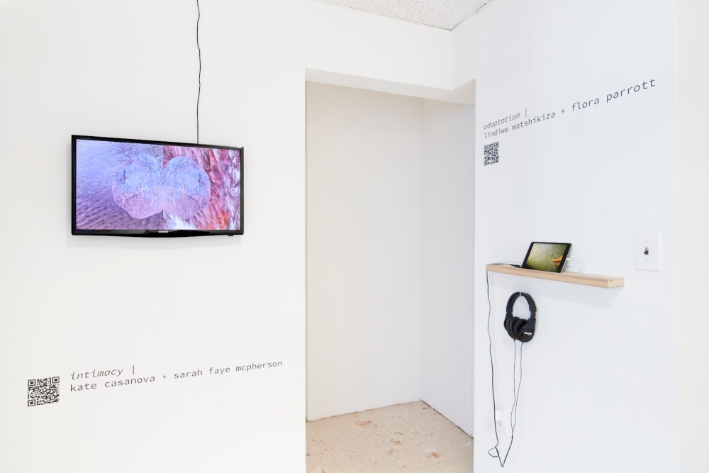 ima + stand4, intermission museum of art - archive: volume i at stand4 gallery, september through october 2021 curated by john ros and rose van mierlo, brooklyn, new york